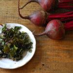 Nutritious Beet Recipes
