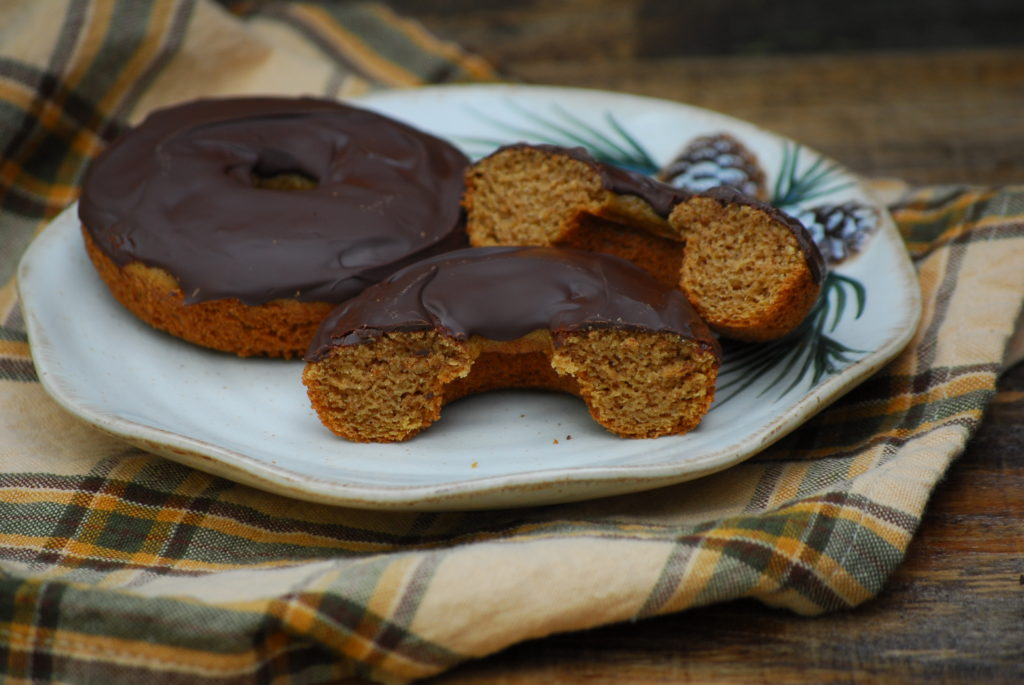 Grain Free cake doughnuts have excellent texture and taste.