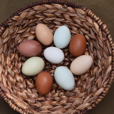 5 Breakfast Egg Recipes